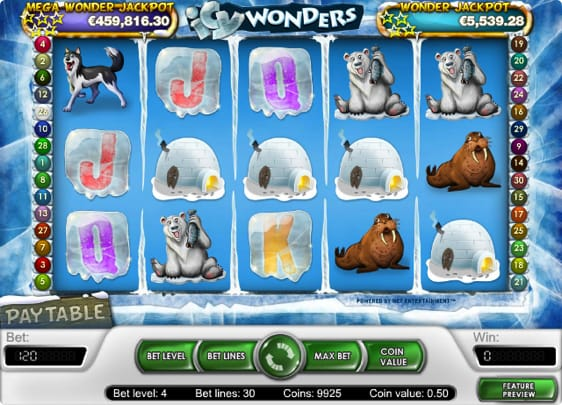 Icy Wonders spillemaskine