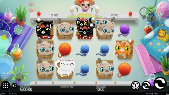 Not Enough Kittens spillemaskine hos InterCasino