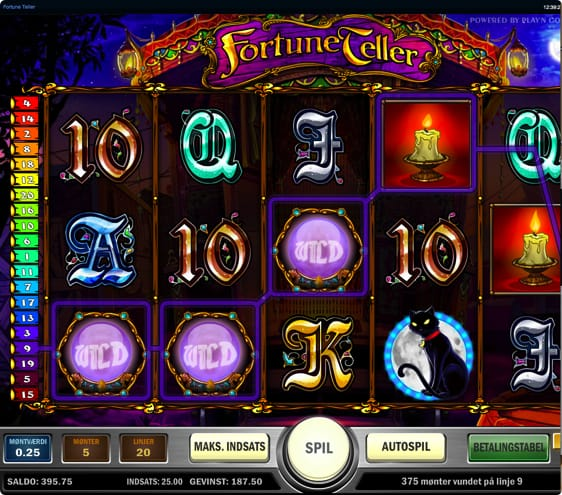 Fortune Teller Automat